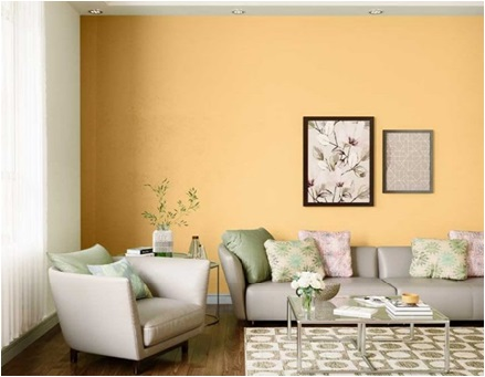 Interior Wall Paint Options , Home Decor , Home Improvement