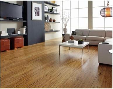 Vitrified Floor Tile Options